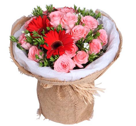 不一样的精彩----戴安娜粉玫瑰16枝,红色太阳花3枝