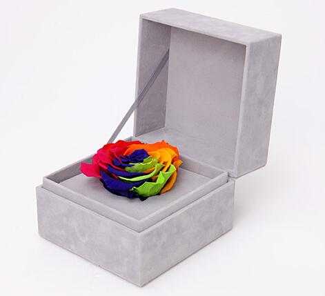 溢彩----彩虹永生玫瑰:厄瓜多尔进口巨型玫瑰