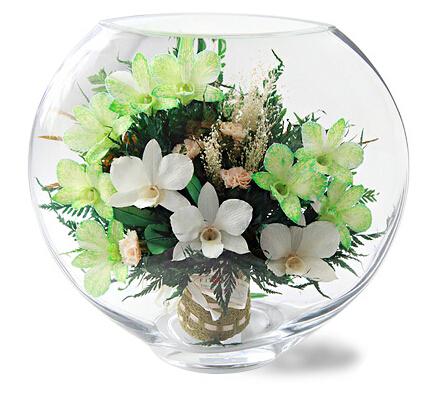 清新如兰(大号)----进口保鲜花,清新兰花系列,清新优雅,装点家居礼物