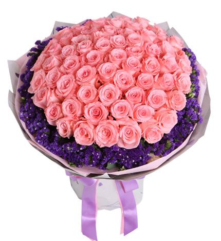 不变的心----戴安娜玫瑰66枝