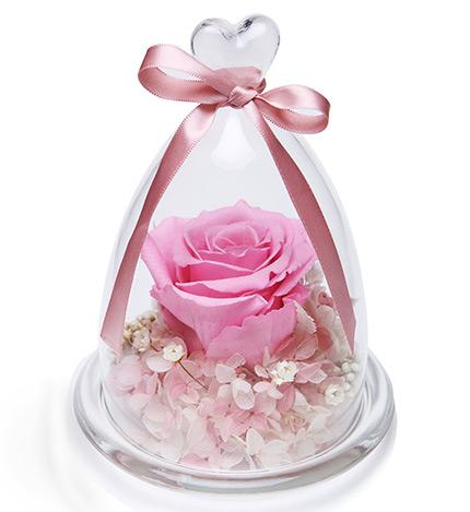 想念的季节----厄瓜多尔粉玫瑰1朵