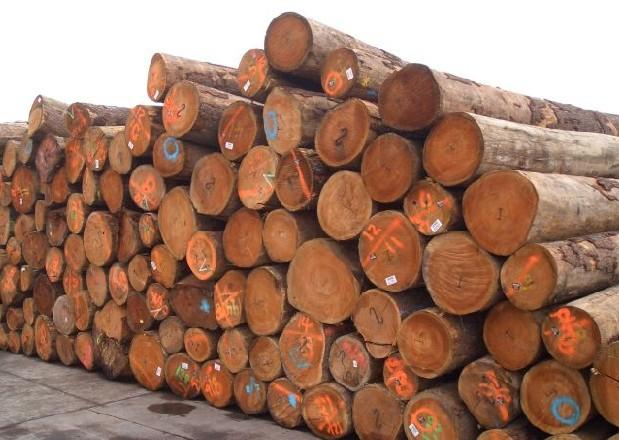 >68西安木材市场    西安聚源木材厂主要经营原木,源木,桐木,椿木