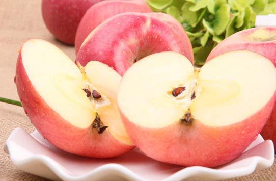 陕西苹果概述