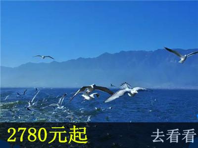 云南暑期亲子6日游