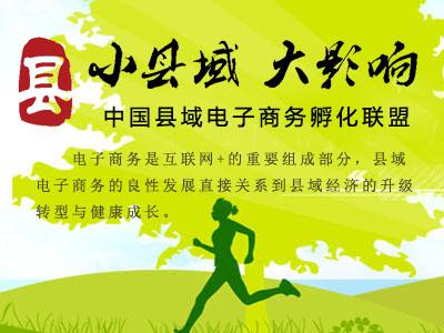 中国县域电子商务孵化联盟