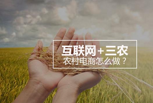 农村电商盈利模式